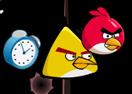 Angry Bird Shoting