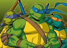Ninja Turtle Double Dragons