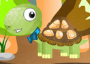 Turtle Harvest