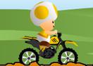 Toad Biker