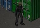 Stealth Hunter 2