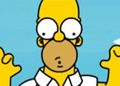 Homer Simpson's Great Adventure